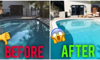 IT'S FINALLY DONE! BEFORE AND AFTERS OF THE YARD TRANSFORMATION